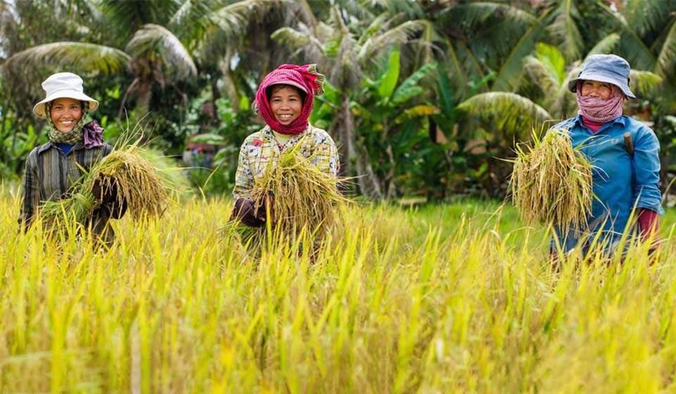 Vietnam Camboya travel