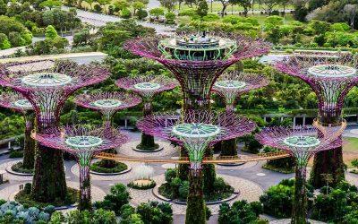 Excursión privada en Singapur con guía en español en privado en 5 horas