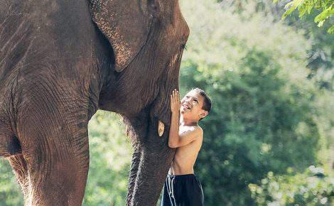 Tailandia imprescindible