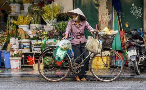 Excelencia de Vietnam.