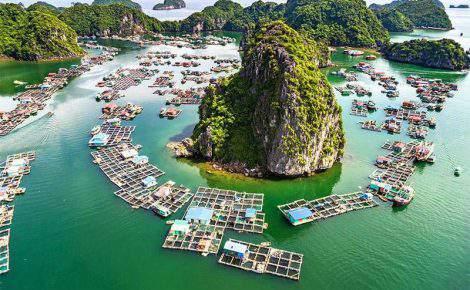 Maravilhas da Tailândia, Vietnã e Camboja em Português