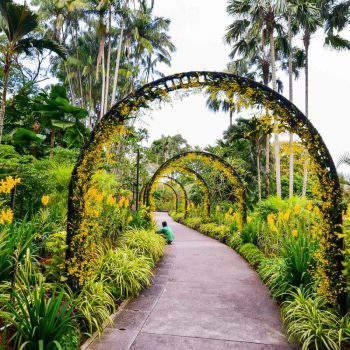 Jardim Nacional das Orquídeas