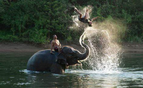 Passeo con elefantes a Baan Chang día completo