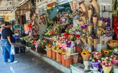 Bangkok al completo con guia privado en español